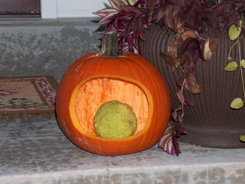 2008 Halloween Jack-o-lantern